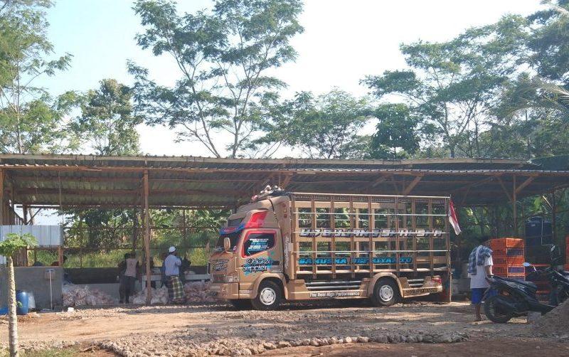 Belum Miliki Izin, Rumah Potong Ayam di Sidawangi Sudah Beraktivitas